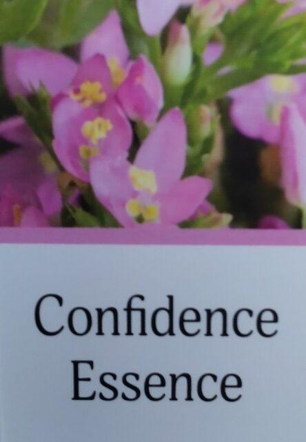 Confidence Essence – vertrouwen essence Jan de Vries