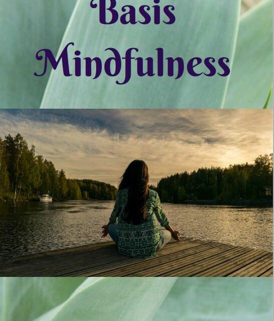 Basis Mindfulness, de beginselen om mindful door het leven te gaan