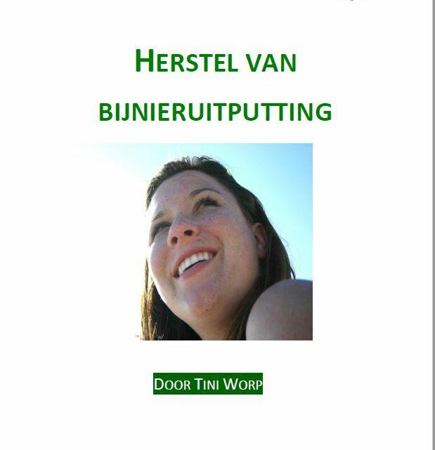 E-book 'Herstellen van bijnieruitputting', weg met restverschijnselen van burn-out